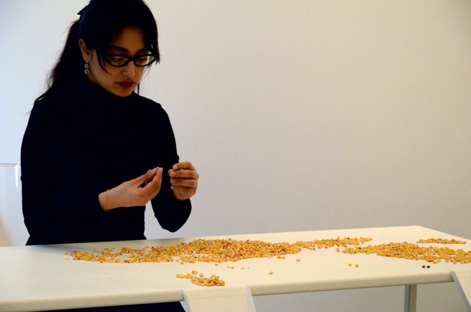 The Good Seed, Galerie Imane Fares Paris 2012